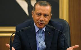 Egypt to Erdogan: We do not need lectures from a 'Western agent'